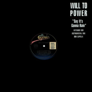 "Will To Power - Say It's Gonna Rain (12"")"
