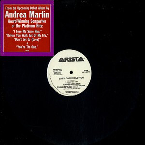 """Andrea Martin - Baby Can I Hold You (12"""", Promo)"""