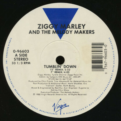 Ziggy Marley And The Melody Makers - Tumblin' Down (12