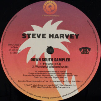 "Steve Harvey (4) - Down South Sampler (12"", Promo, Smplr)"