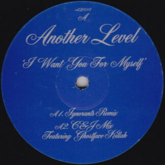"""Another Level - I Want You For Myself (12"""")"""