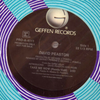 "David Peaston - Take Me Now (12"", Promo)"