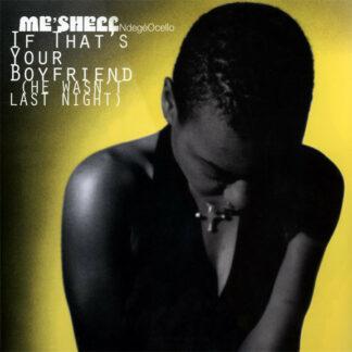 Me'Shell NdegéOcello - If That's Your Boyfriend (He Wasn't Last Night) (12