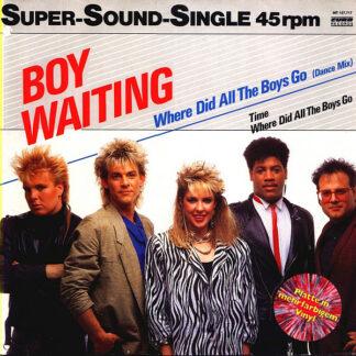 """Boy Waiting - Where Did All The Boys Go (12"""", Single, Mul)"""