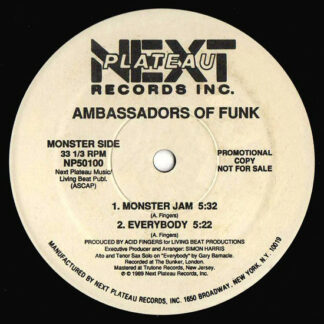 """Ambassadors Of Funk - Another Side To You (12"""", Promo)"""