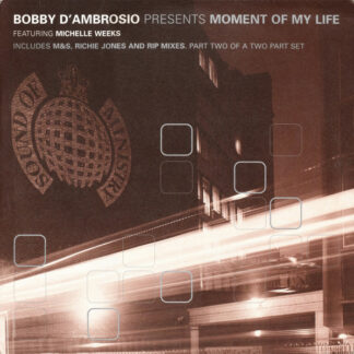 "Bobby D'Ambrosio Featuring Michelle Weeks - Moment Of My Life (12"", 2/2)"
