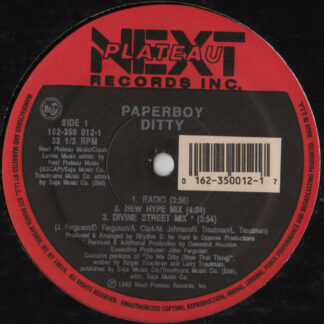 """Paperboy - Ditty (12"""", RE)"""